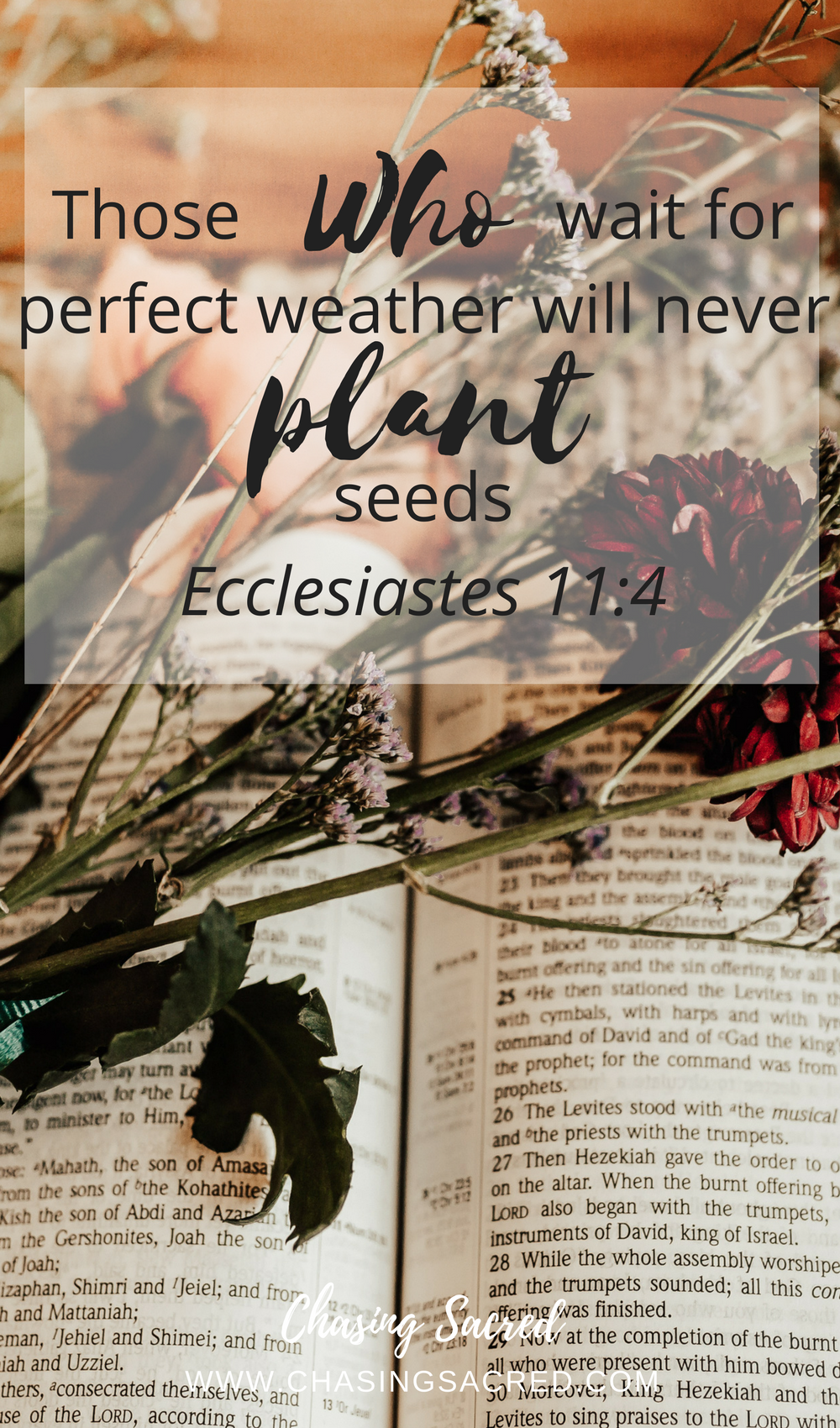 Those who wait for perfect weather will never plant seeds | Chasing Sacred